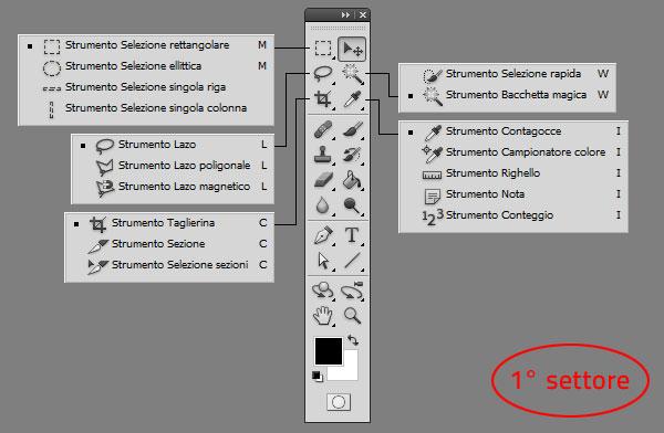 Photoshop - Gli strumenti, primo settore: Strumenti per la gestione delle selezioni e delle immagini