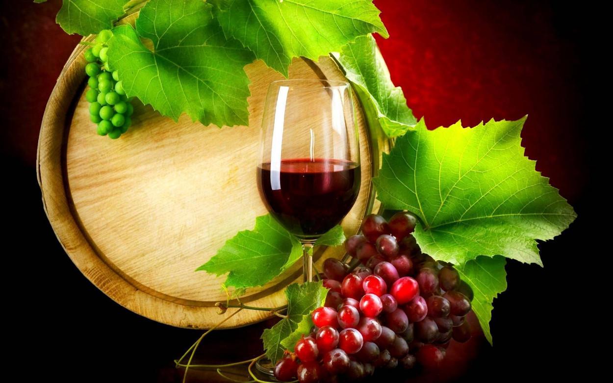 Tuscany Gourmet  6 Nights / 7 Days