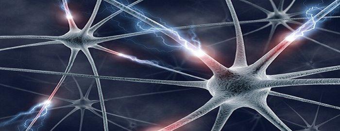 Sostegno al Malato Neurologico e al Caregiver