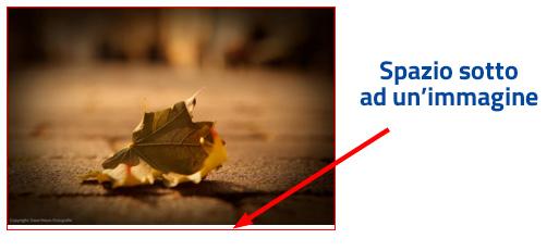 CSS - Rimuovere spazio sotto alle immagini